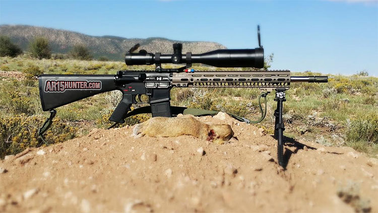 223 Prairie Dog Hunt with Custom AR15
