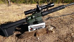 Franklin Armory F17-L with Ground Squirrel