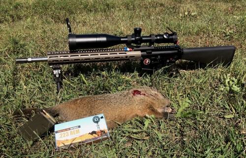 Australian-outback-ammo-55gr-blitzking-1200-3