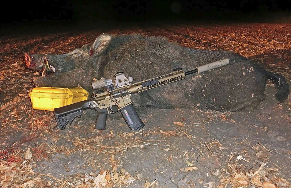 Texas – After Harvest Nighttime Hog Hunt with the 6.8SPC