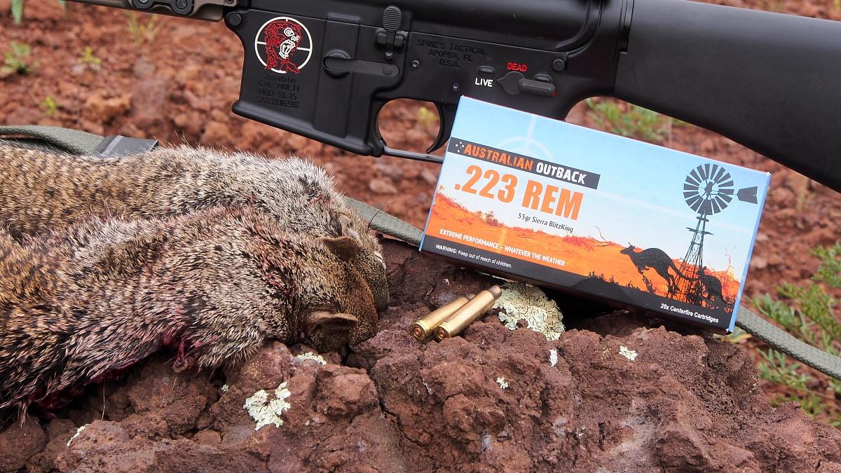 Prairie Dog Hunt – Australian Outback Ammo .223 – 55gr BlitzKing