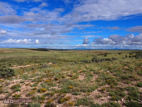 Australian-outback-ammo-arizona-hunt-report-grass-lands-1