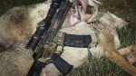 Mixed Bag – Hog and Coyote Night Hunt in Texas
