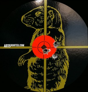 100 Yard - 3-Shot group with the Winchester 35 grain Lead Free ammo