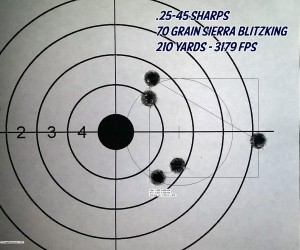 25-45-Sharps-70-Grain-Blitzking-Target