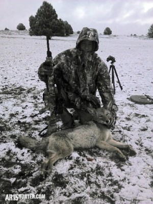 The R25 in .243 dropped this coyote quickly!