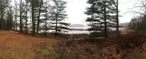 A panoramic view from near by one of the spots I was hunting.