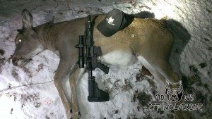 WT-Doe-northern-shooter-277-Wolverine-1